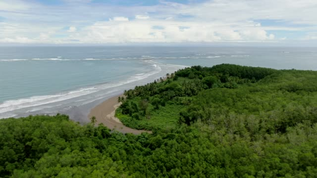 beautiful cinematic aerial footage of the whale tale beach in the marino ballena national park in costa rica - tail fluke stock videos & royalty-free footage