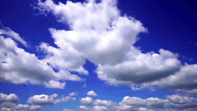 vídeos de stock, filmes e b-roll de fundo de cloudscape bonito - cúmulo nimbo