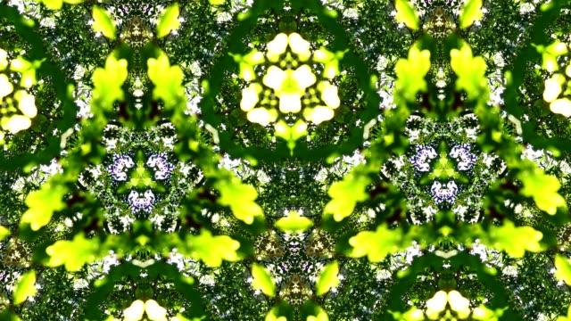 Schöne bunte abstrakte grüne Tapeten in Bewegung