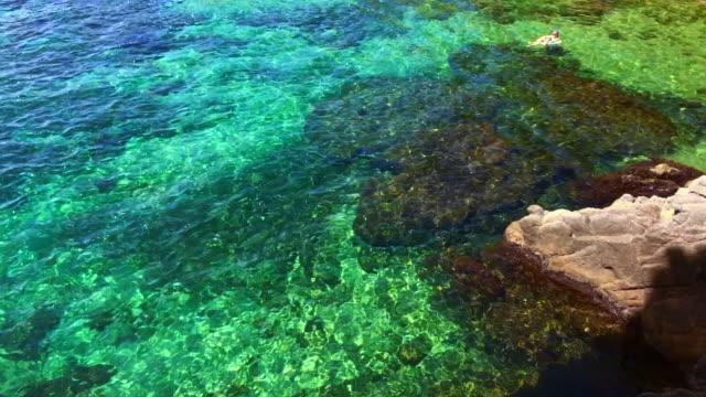vídeos y material grabado en eventos de stock de beautiful colors of costa brava waters in the mediterranean sea during summer vacations in the catalonia region with woman floating in inflatable ring. - flotar sobre agua