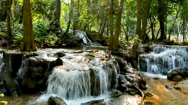 schöne tiefe wald kroeng krawia wasserfall in kanchanaburi, thailand - tropischer baum stock-videos und b-roll-filmmaterial