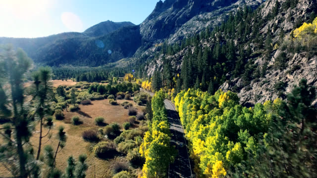 Beautiful drone shot following a car on a lonesome road in the California mountains as the trees are changing colors.