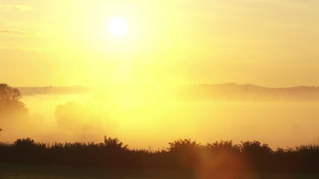 beautiful early morning mist - somerset england stock videos & royalty-free footage