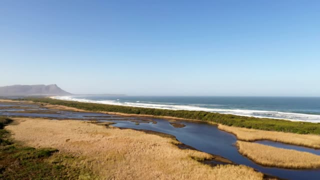 beautiful estuary near the coast - estuary stock videos & royalty-free footage