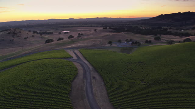 Beautiful Evening in Sonoma County, California - Drone Shot