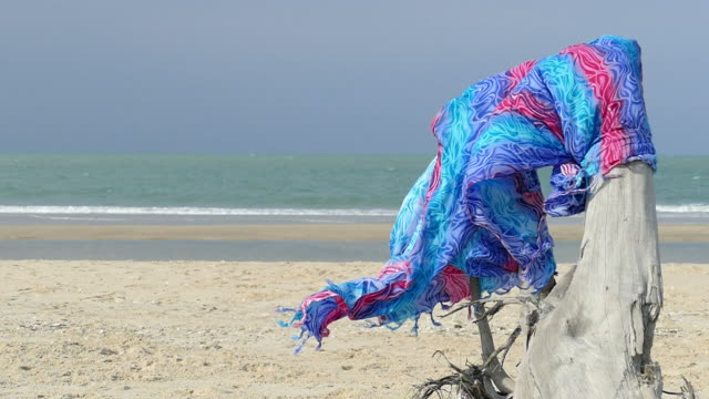 beautiful fabric on dry log on beach - hd format stock videos & royalty-free footage