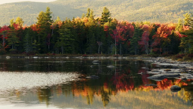 beautiful fall foliage forest in the white mountains in new hamphire. autumn leaf colored reflections in lake - spoonfilm stock-videos und b-roll-filmmaterial