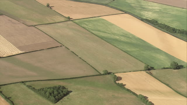 Beautiful farm fields fill the countryside in Scotland. Available in HD.