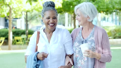 beautiful female friends laugh while walking in park together - braided hair stock videos & royalty-free footage