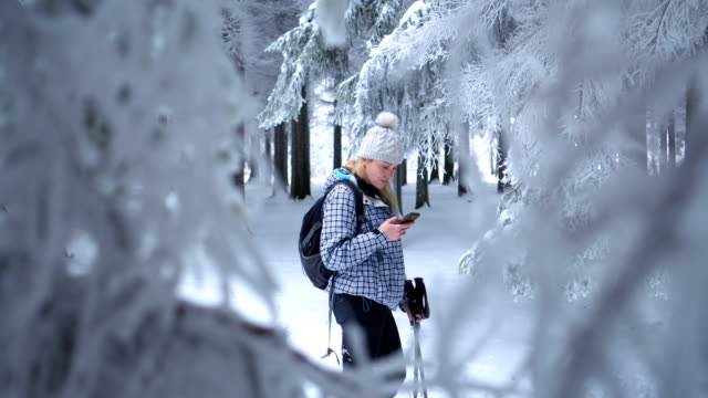 beautiful female hiker using smart phone in winter forest - idyllic stock videos & royalty-free footage