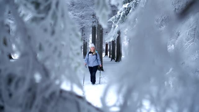 Prachtige vrouwelijke wandelaar wandelen in winter woud
