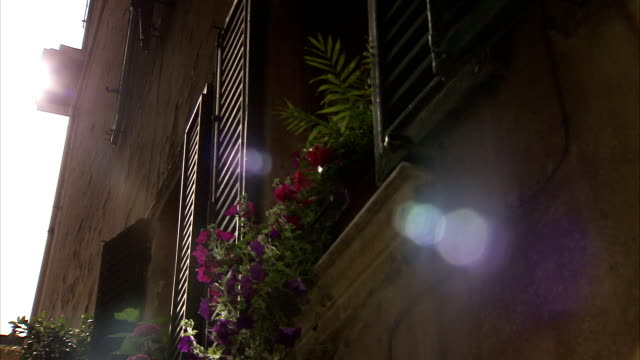 beautiful flowers fill window boxes on the side of apartment buildings in montepulciano, tuscany. available in hd. - montepulciano stock videos & royalty-free footage