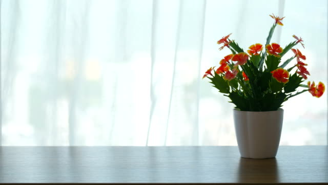 beautiful flowers in front of room windows - table stock videos & royalty-free footage