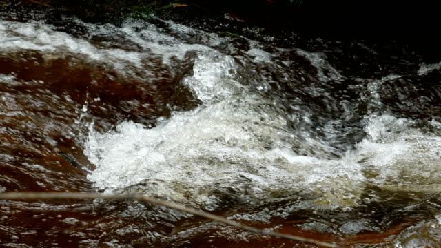 Beautiful Flowing  Water Stream