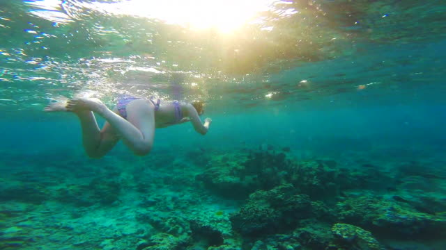 vídeos de stock e filmes b-roll de beautiful footage of girl doing snorkel following group of fishes in the paradise gili islands during travel vacations in indonesia. - mergulho submarino