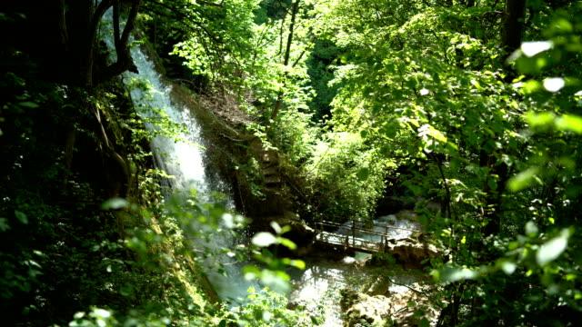 vídeos y material grabado en eventos de stock de hermosa cascada del bosque - área silvestre