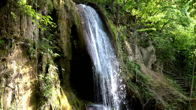 beautiful forest waterfall - moss stock videos & royalty-free footage