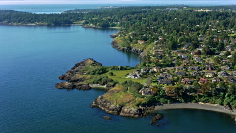 aerial beautiful forested coast with houses - coastal feature stock videos & royalty-free footage