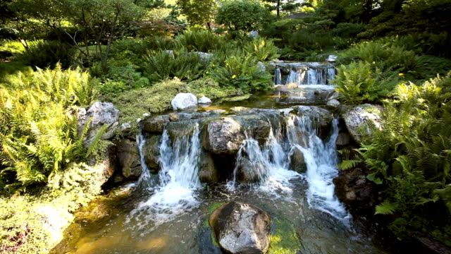 beautiful garden with waterfall - oriental garden stock videos and b-roll footage