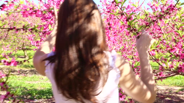 beautiful girl walking between blooming pink trees during spring weather and sunny day in the catalonia countryside, touching and feeling the trees with nice warm colors. - maglietta senza maniche video stock e b–roll