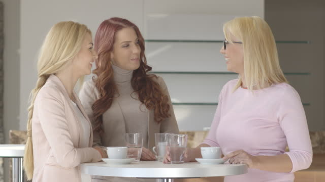 beautiful girls in restaurant. - only girls stock videos & royalty-free footage