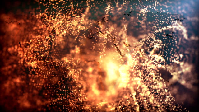 beautiful gold particles, abstract background - winning the first prize stock videos and b-roll footage