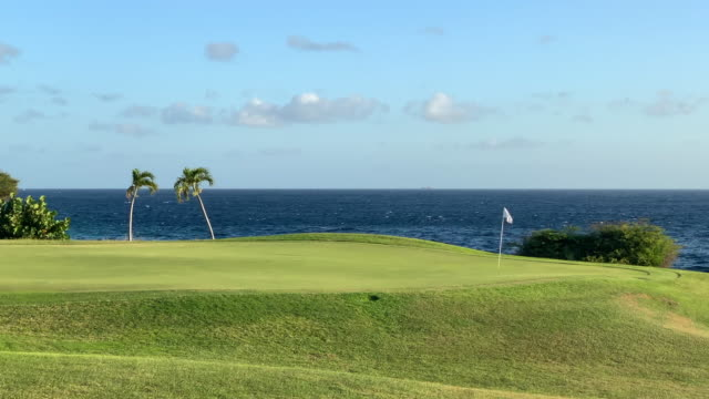 beautiful golf course at sunset in curacao - flag stock videos & royalty-free footage