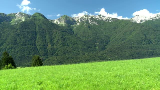 hd crane: beautiful green landscape - julian alps stock videos and b-roll footage