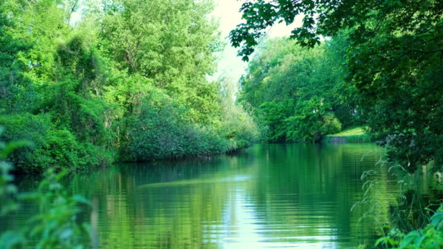 beautiful green river - turquoise coloured stock videos & royalty-free footage