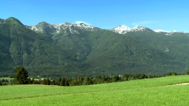 hd: beautiful green valley - julian alps stock videos and b-roll footage