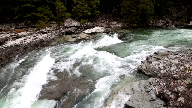 beautiful green water rapids in river through lichen covered rocks. - mcdonald creek stock-videos und b-roll-filmmaterial