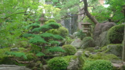 Beautiful Japanese garden with decorated trees and koi fish pond
