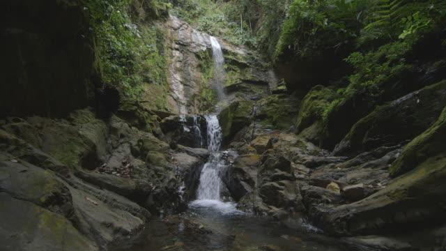 vídeos de stock, filmes e b-roll de beautiful jungle waterfall - ponto de vista de câmera