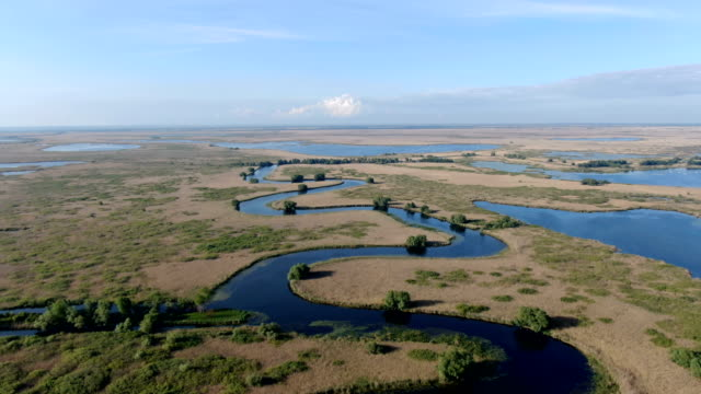 beautiful lake in danube delta, romania/ aerial drone view - romania stock videos & royalty-free footage
