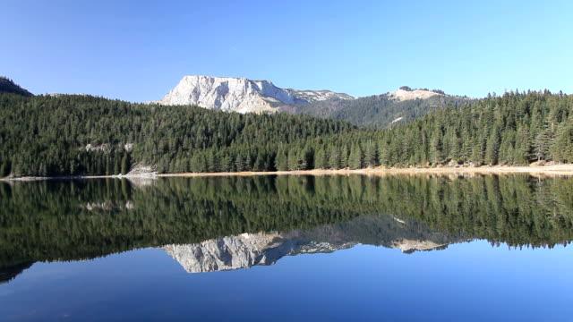 schöner see in der natur - naturpark stock-videos und b-roll-filmmaterial