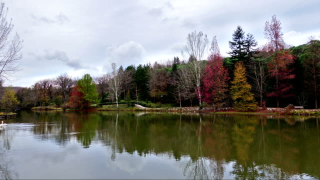 vídeos de stock e filmes b-roll de belo lago time lapse - rx