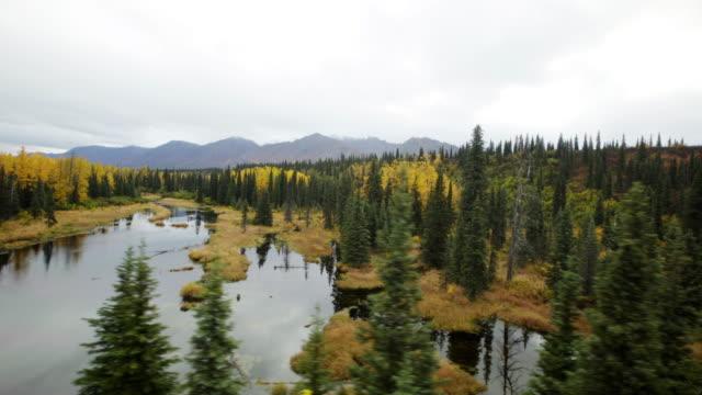 beautiful lands at denali alaska - denali national park stock videos & royalty-free footage