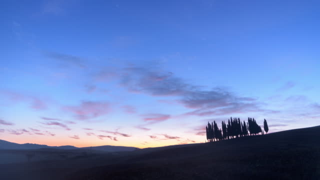 beautiful landscape morning sunrise with group of tree in tuscany, italy,time-lapse 4k quality - rustic stock videos & royalty-free footage