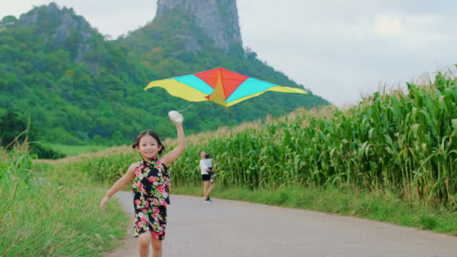 beautiful little girl flying a kite in nature - kid with kite stock videos & royalty-free footage