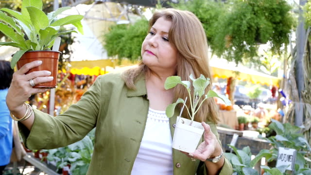 Beautiful mature Hispanic woman compares two plants in farmer's market or garden center