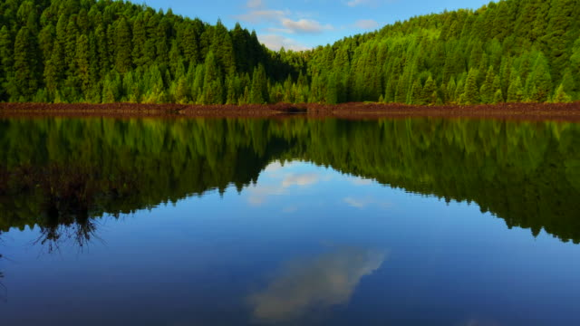 vídeos de stock, filmes e b-roll de beautiful mirror reflection in volcano lake with green forest and pure water. - lago reflection