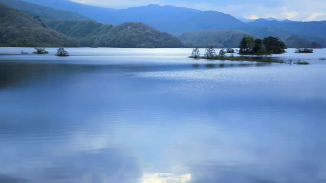 beautiful morning and tree on the lake - plusphoto stock videos & royalty-free footage