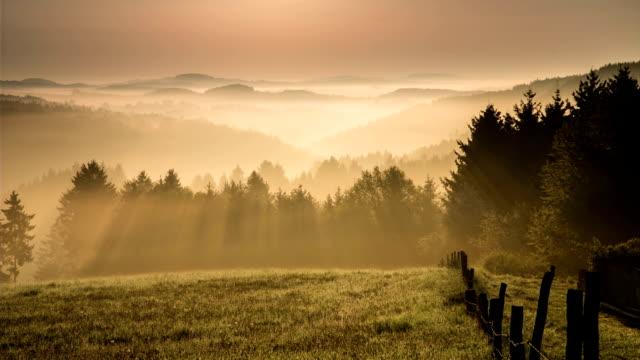 CRANE UP: Beautiful morning landscape