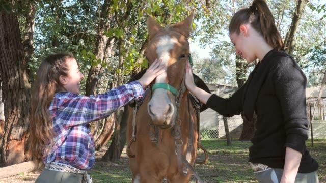 vídeos de stock, filmes e b-roll de matriz e filha bonitas que têm o divertimento que acaricia o cavalo ao falar e ao riso - montar um animal