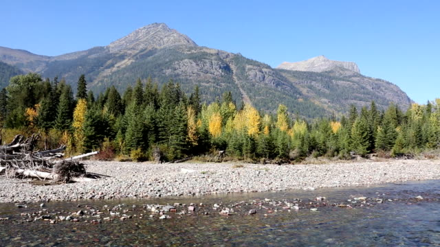 beautiful mountain river and fall colors - glacier national park us stock videos and b-roll footage