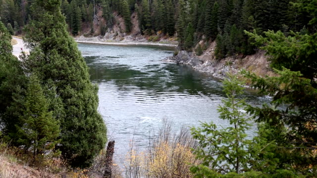 beautiful mountain river in idaho - snake river stock videos and b-roll footage