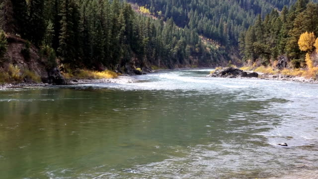 beautiful mountain river - snake river stock videos & royalty-free footage