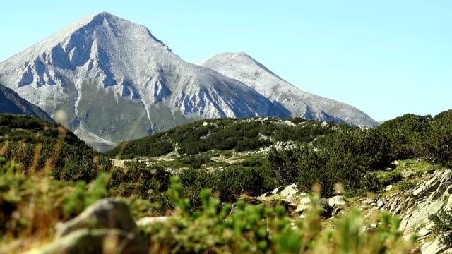 vídeos de stock, filmes e b-roll de belas montanhas do parque nacional pirin pela manhã. foco seletivo. - bulgária