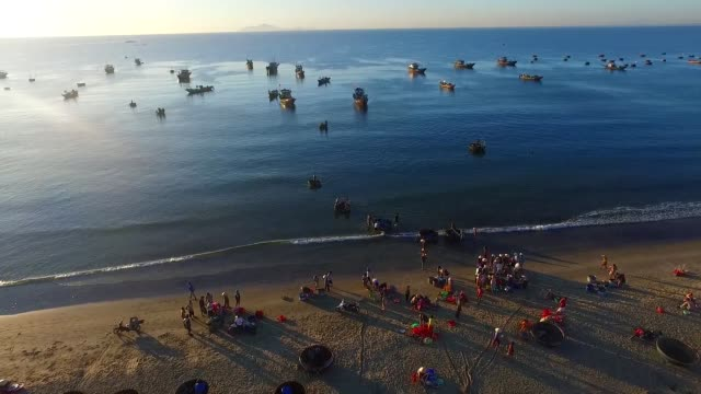 beautiful my khe beach from drone in da nang, vietnam - ダナン点の映像素材/bロール