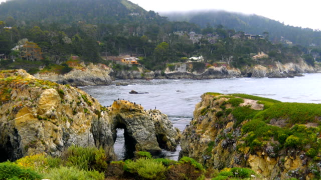 beautiful nature of california - monterey county stock videos and b-roll footage